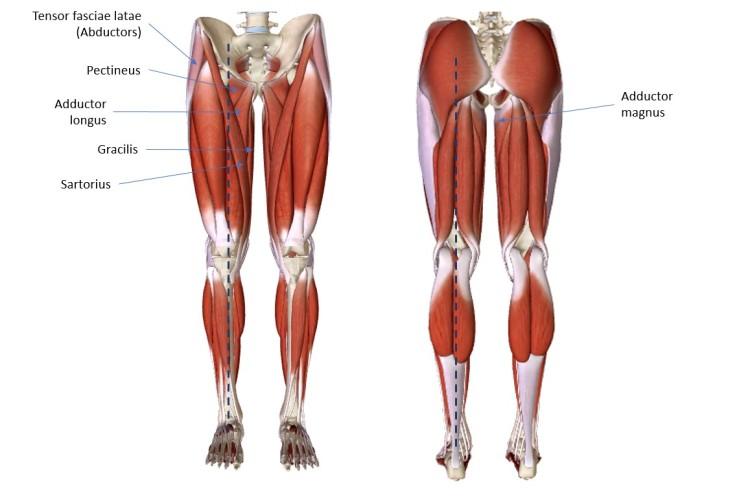 Understanding Wing Chun Structure Lower Body Wing Chun Journey